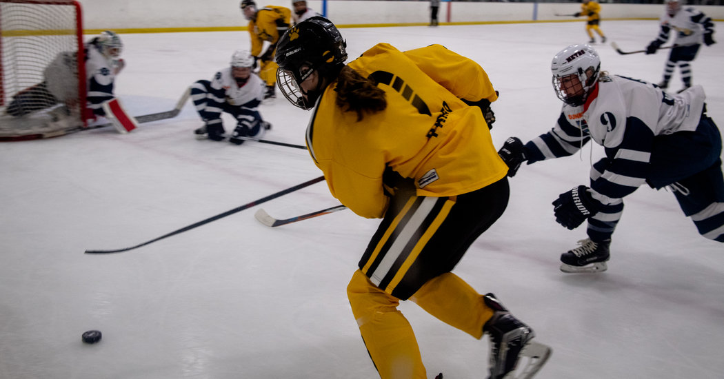 With Pro Sports Paused, a Women's Hockey League Expands